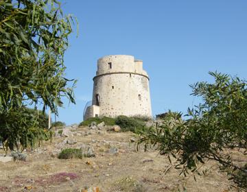 Torre Canai